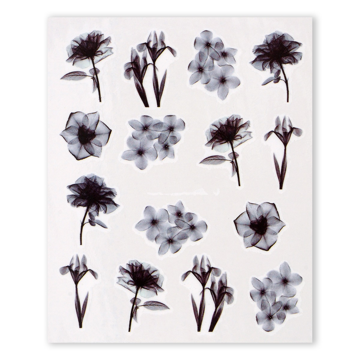 Image of   Water Decal, blomster i sort/hvid